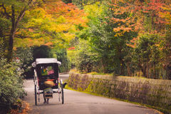 Japanese girls on rickshaw Royalty Free Stock Images