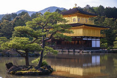Japanese golden temple Kinkakuji and garden Royalty Free Stock Image