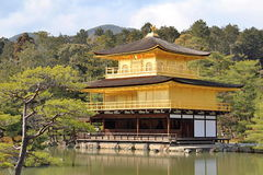 Japanese golden temple Stock Images
