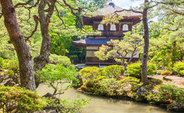 Japanese green garden Royalty Free Stock Image