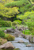Japanese green garden Stock Image
