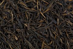 Japanese green Kokeicha formed tea. High resolution photo Stock Images