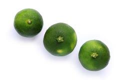 Japanese green orange fruit isolated  3. Japanese green orange fruit isolated in white Stock Photo