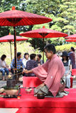 Japanese green tea ceremony in garden Royalty Free Stock Images