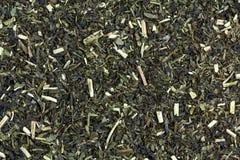 Japanese Green tea with Jasmine Royalty Free Stock Image