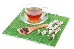 Japanese green tea and sakura branch over bamboo mat Royalty Free Stock Photos