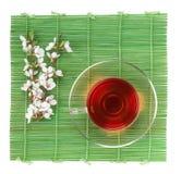 Japanese green tea and sakura branch over bamboo mat Stock Images