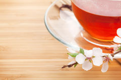 Japanese green tea and sakura branch over mat and bamboo table Royalty Free Stock Photo