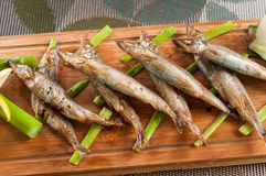 Japanese grilled capelin Stock Photography