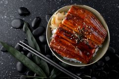 Japanese grilled eel with rice. Japanese grilled eel with sweet sauce on rice cup or unagi kabayaki in Japanese menu name photo with indoor lighting royalty free stock images