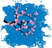 Japanese grungy style sakura blossom. Vector illustration vector illustration