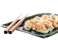 Japanese gyoza dish isolated Stock Photography