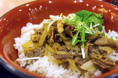 Japanese gyudon, or beef bowl Stock Photos