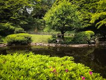 Japanese Hidden Garden. Hidden Japanese Garden of Youth royalty free stock photos
