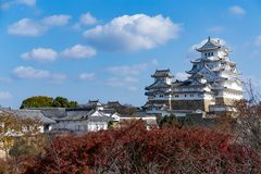Japanese Himeiji Castle and maple tree. Beautiful scenery landscape at outdoor Stock Photo