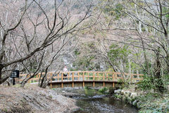 Japanese historical bridge. In Yufuin city Royalty Free Stock Photo
