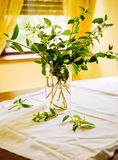 Japanese Honeysuckle bouquet Stock Photography