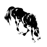 Japanese horse. The horse of the Japanese traditional paintingnI drew a horse in Japanese tradition techniquen Royalty Free Stock Photography