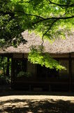 Japanese house. Japanese traditional house in a park Stock Image