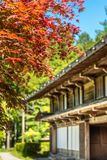 Japanese house with red maple. Japanese house with maple tree stock photos