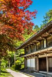 Japanese house with red maple. Japanese house with maple tree stock images