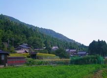 Japanese houses on the edge of a forest, with crops in the foreground. Royalty Free Stock Photography