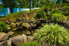 A japanese or japan graden style with water bamboo pipe line with green grass and water flowing on small pond with rock and stone royalty free stock photography
