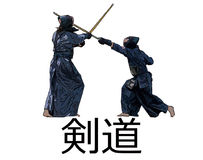 Japanese kendo fighters with bamboo swords on white bacgkround Stock Photography
