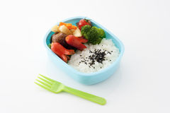 Japanese kids lunch box. On white background stock photos