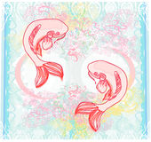 Japanese koi  background Stock Images