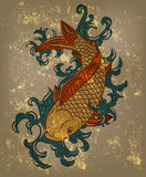 Japanese koi carp fish Stock Photo