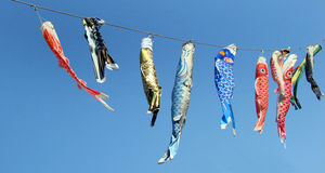 Japanese koinobori flags for Children's day Stock Photography