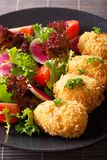 Japanese korokke with a salad of fresh vegetables close-up. vert. Japanese korokke with a salad of fresh vegetables close-up on a plate. vertical Stock Image