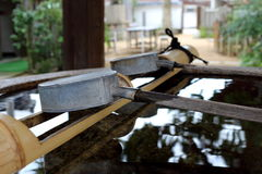 Japanese ladle water Stock Image