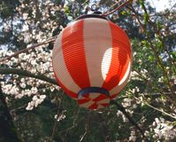 Japanese Lantern Stock Images