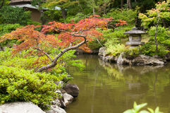 Japanese lantern near the pond Royalty Free Stock Image