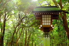 Japanese lantern in park Royalty Free Stock Photography