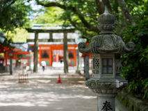 Japanese lantern with Torii in background Stock Images