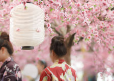 Japanese lantern Stock Photo