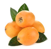 Japanese loquat Stock Photography