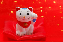 Japanese lucky cat Royalty Free Stock Photo