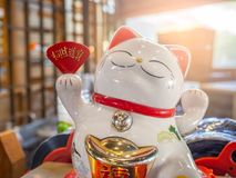 Japanese lucky cat in front of a shop. White Japanese lucky cat in front of a shop. Concept for good business royalty free stock photography