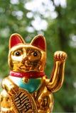 Japanese lucky cat Maneki Neko. In closeup stock photo