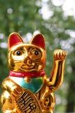 Japanese lucky cat Maneki Neko. In closeup royalty free stock photography