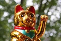 Japanese lucky cat Maneki Neko. In closeup stock image