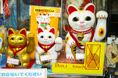 Japanese lucky cat. Maneki neko - Japanese Lucky Cat, Tokyo, Japan royalty free stock image