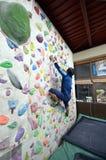 A Japanese man climbing a rock wall indoor. Royalty Free Stock Image