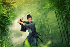 Samurai Royalty Free Stock Image