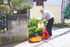A japanese man  was  dressing a plants in the morning. A japanese man  was dressing a plants with feel good  in  the morning in front of  his  home Stock Photography