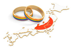 Japanese map with LGBT rainbow rings, 3D rendering. Japanese map with LGBT rainbow rings, 3D royalty free illustration